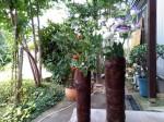 樹皮花器2