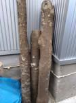 エンジ伐採木
